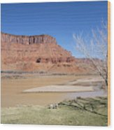 View From A Cabin At Sorrel River Ranch On The Colorado River Ne Wood Print