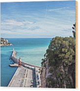 View From Castle Hill To The Sea In Nice Wood Print