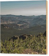 View From Flattop Mountain Trail Wood Print