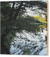 View Of The Lake Through The Branches Wood Print