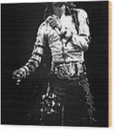 Views Of Michael Jackson Concert During Wood Print