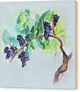 Vine And Branch Wood Print