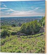 Vines Wood Print
