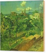 Vineyard At Vico Wood Print