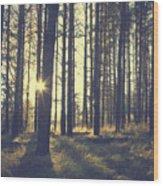 Vintage Forest Background Wood Print
