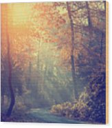 Vintage Photo Of Autumn Forest Wood Print