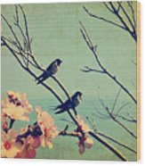 Vintage Spring Image With Swallows And Wood Print