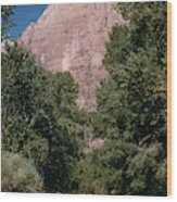 Virgin River And Cliff In Zion National Park, Utah - Utah300 00303 Wood Print