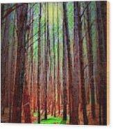 Waihou Forest  - Maui Wood Print