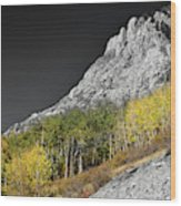 Waning Gibbous Moon Autumn Monarch Pass Bwsc Wood Print