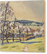 Warm Spring Light In The Fruit Orchard Wood Print