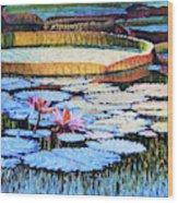 Golden Light on Lilies Wood Print