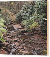 Washington Creek Wood Print