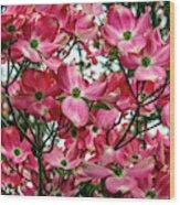 Washington State Magnolia Wood Print