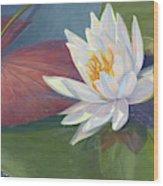 Water Beauty Wood Print