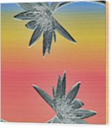 Water Lily Duo Wood Print