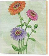 Watercolor Orange Pink Purple Zinnia Flowers Wood Print