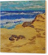 Waves On A Rocky Beach Wood Print
