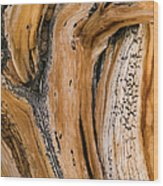 Weathered Wood Of Ancient Bristlecone Wood Print