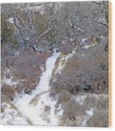 West Dakota January Prairie Wood Print