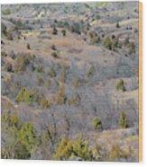West Dakota Prairie Reverie Wood Print
