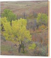 West Dakota September Splendor Wood Print