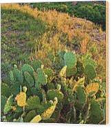 West Texas Canyon Country At Buffalo Wood Print