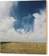 West Texas Grasslands United States Of Wood Print