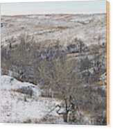 Western Edge Winter Hills Wood Print