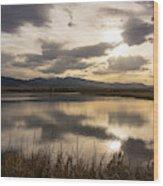 Wetlands At Dusk Wood Print