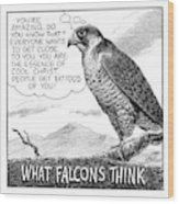 What Falcons Think Wood Print