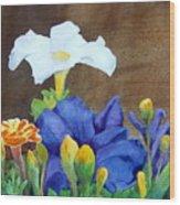 White And Purple Petunia And Marigolds Wood Print