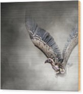 White-backed Vulture - In The Dust Wood Print