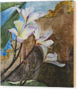 White Flower With Abstract Background Wood Print