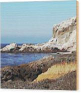 The White Rocks Of Piedras Blancas Wood Print