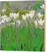 White Tulips Wood Print