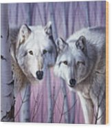 White Wolves By Birch Wood Print