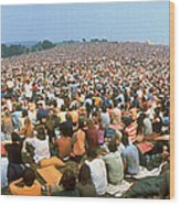 Wide-angle Pic Of Seated Crowd Listening Wood Print