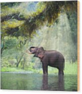 Wild Elephant In The Beautiful Forest Wood Print