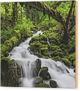 Wild Forest Waterfall Idyllic Green Wood Print
