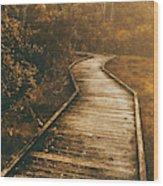 Wild Routes Wood Print