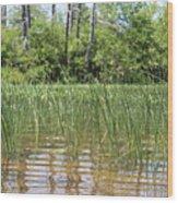 Wild Waters Wood Print