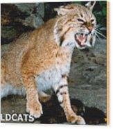 Wildcats Mascot 3 Wood Print