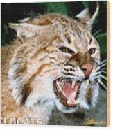 Wildcats Mascot 4 Wood Print