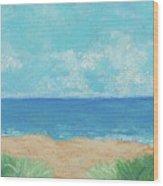 Windy Day At Lowdermilk Beach Wood Print