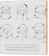 Winter Facial Expressions Wood Print