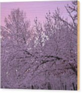 Winter In New England Wood Print