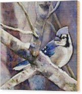 Winter Jay Wood Print