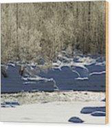 Winter Stream Near Hope On The Kenai Peninsula Alaska Wood Print
