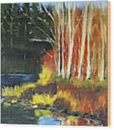 Winter Sunshine Landscape Wood Print